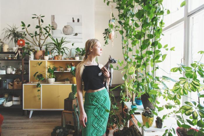 12 полезных домашних растений, за которыми легко ухаживать