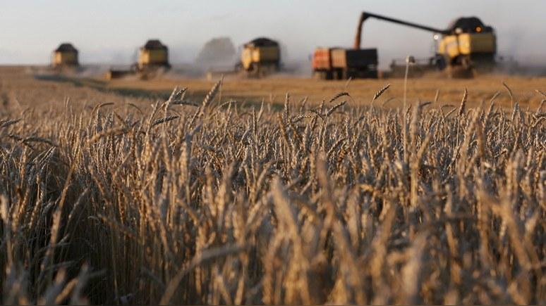 Ouest-France: Россия побьёт советский рекорд по сбору зерна