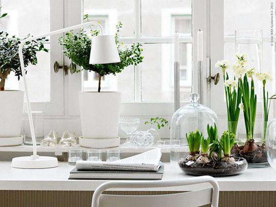 дом, очистить, защитить, энергия, негативная энергия, очистить дом, защитить дом