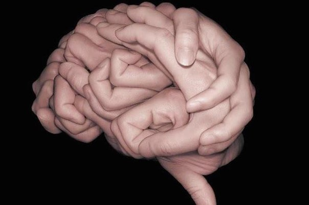 Что такое ум?