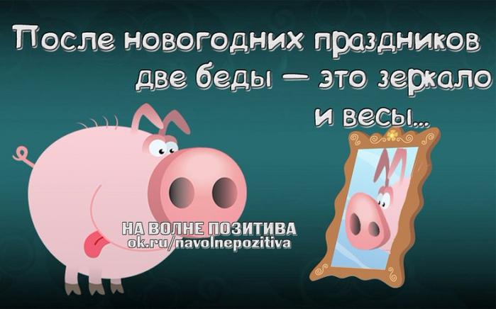1452105264_frazki-23 (700x436, 242Kb)