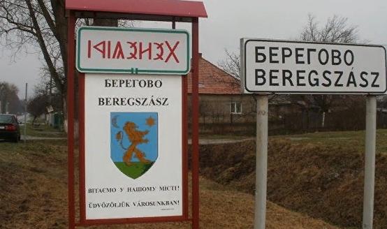 Что делать – украинцы хотят венгерские паспорта? Киев идет в ООН