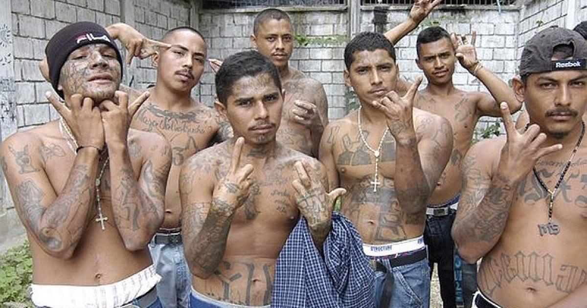 Банды в США. Мифы и реальность