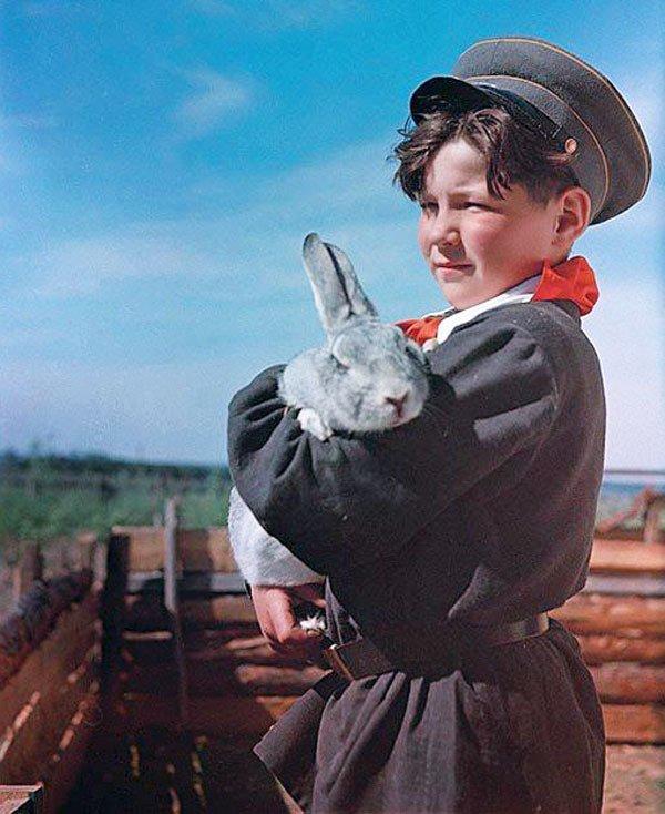Зоологический кружок СССР, детство, кружки