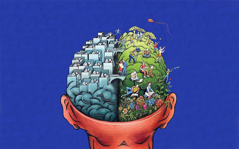 13 Хобби, которые не дадут Вашему мозгу деградировать.