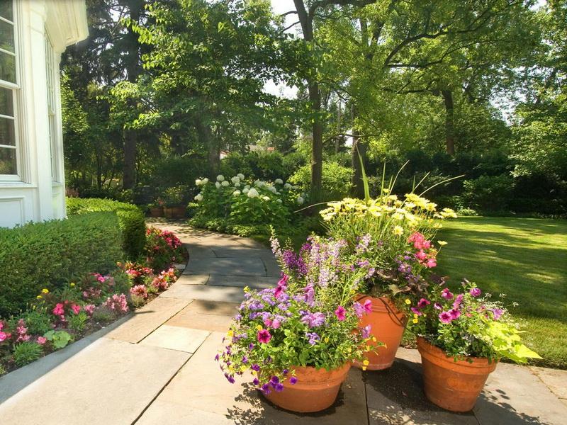 Природный ландшафт в саду на фото