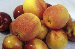 Почему мытые фрукты быстрее портятся?