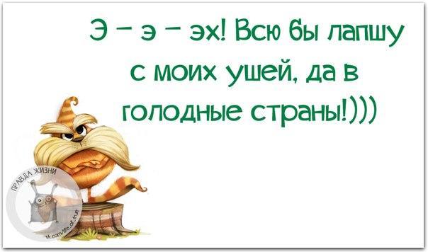 1452105290_frazki-26 (604x356, 108Kb)