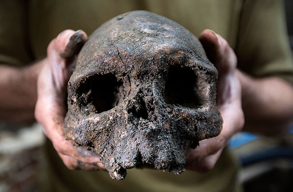 Самого древнего возбудителя бубонной чумы нашли в России