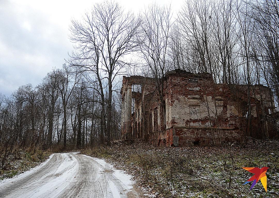 Останки старой усадьбы. Фото: Дмитрий СТЕШИН