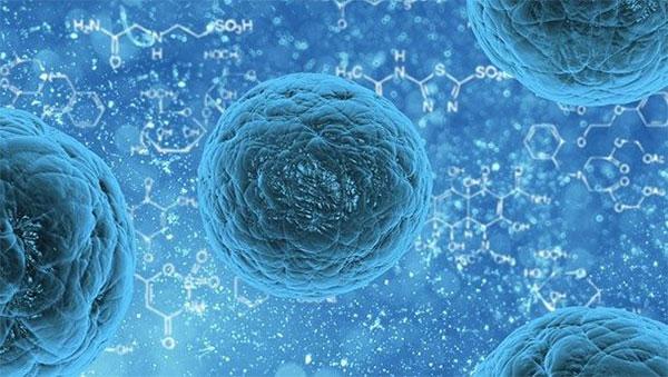Научные прорывы, о которых мы раньше и мечтать не могли