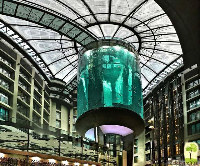 """Самый огромный аквариум в мире - """"Аквадом"""" в Берлине, Германия - 15"""