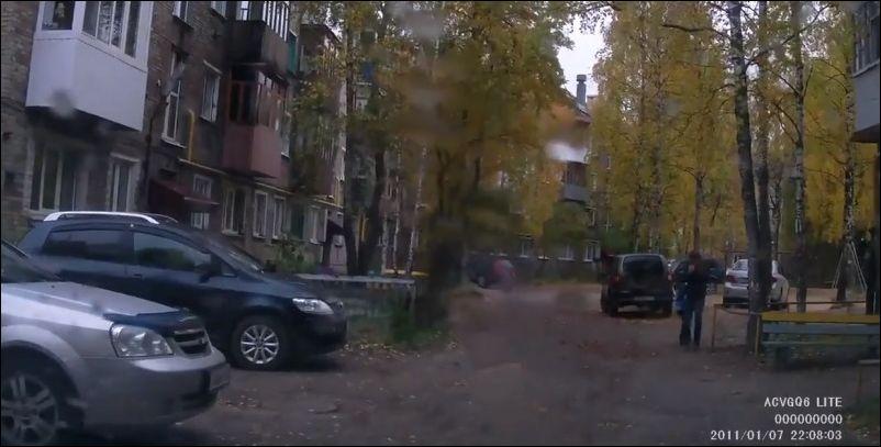 Внезапный лось в городе