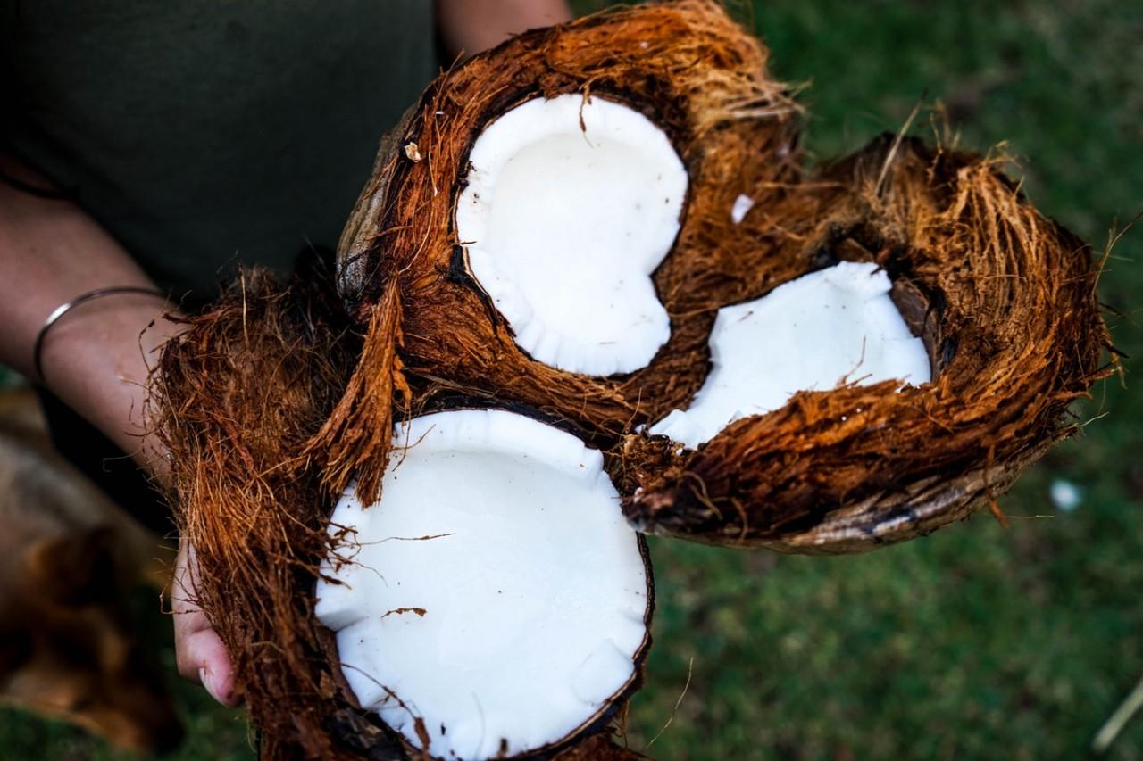 Секреты использования кокосо…