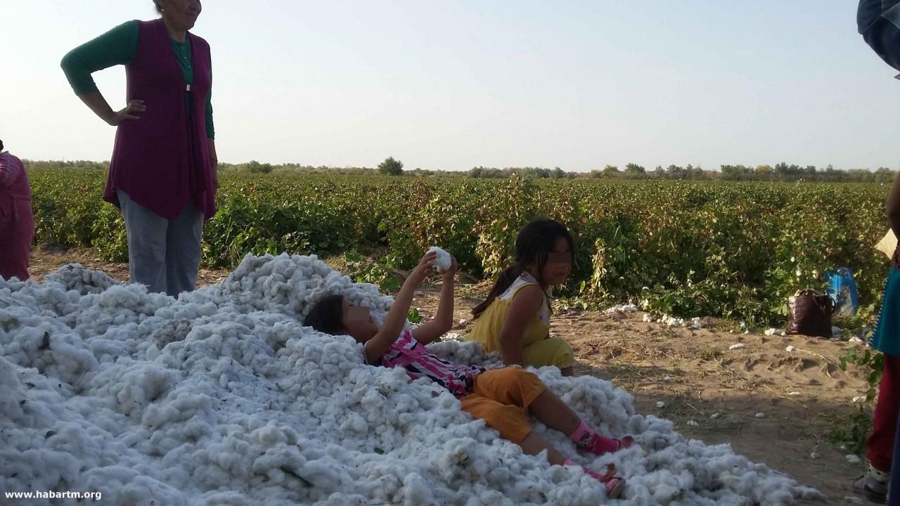Массовая миграция туркмен в …