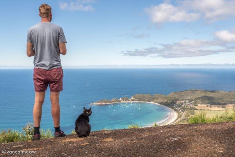 Парень уже три года путешествует по Австралии со своей кошкой