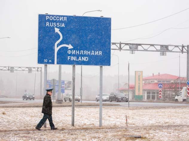 Опасное свинство: Финляндия хочет обнести границу с Россией забором