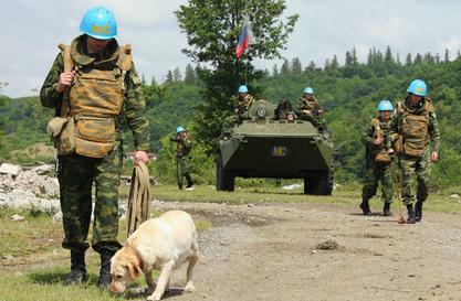 В Сербии призвали власти страны попросить Путина ввести войска в Косово