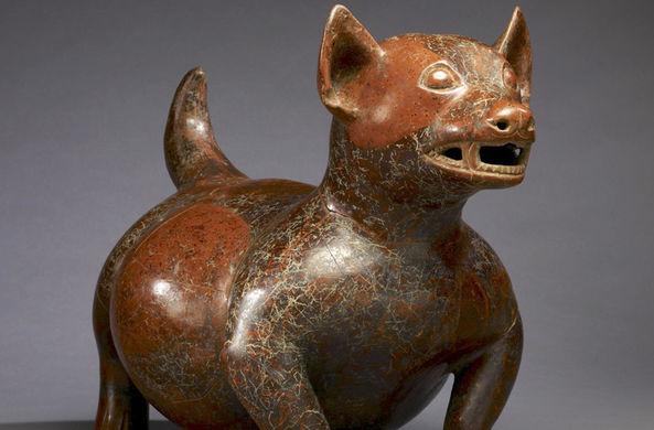 Ученые выяснили: щенки считались престижным подарком во времена древних Майя