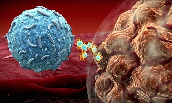 Открыт метод дистанционной иммунотерапии рака