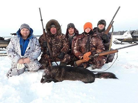 Волк-меланист стал добычей Кировских охотников