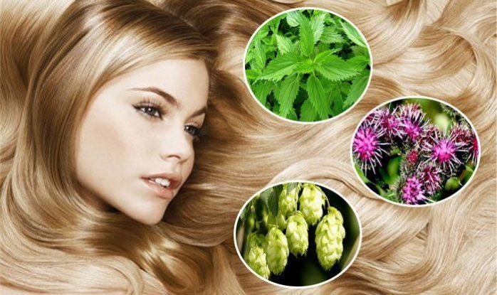Народная медицина укрепления волос