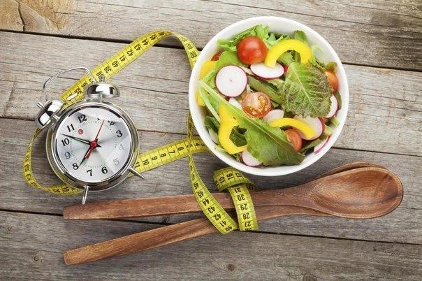 Время за которое переваривается пища