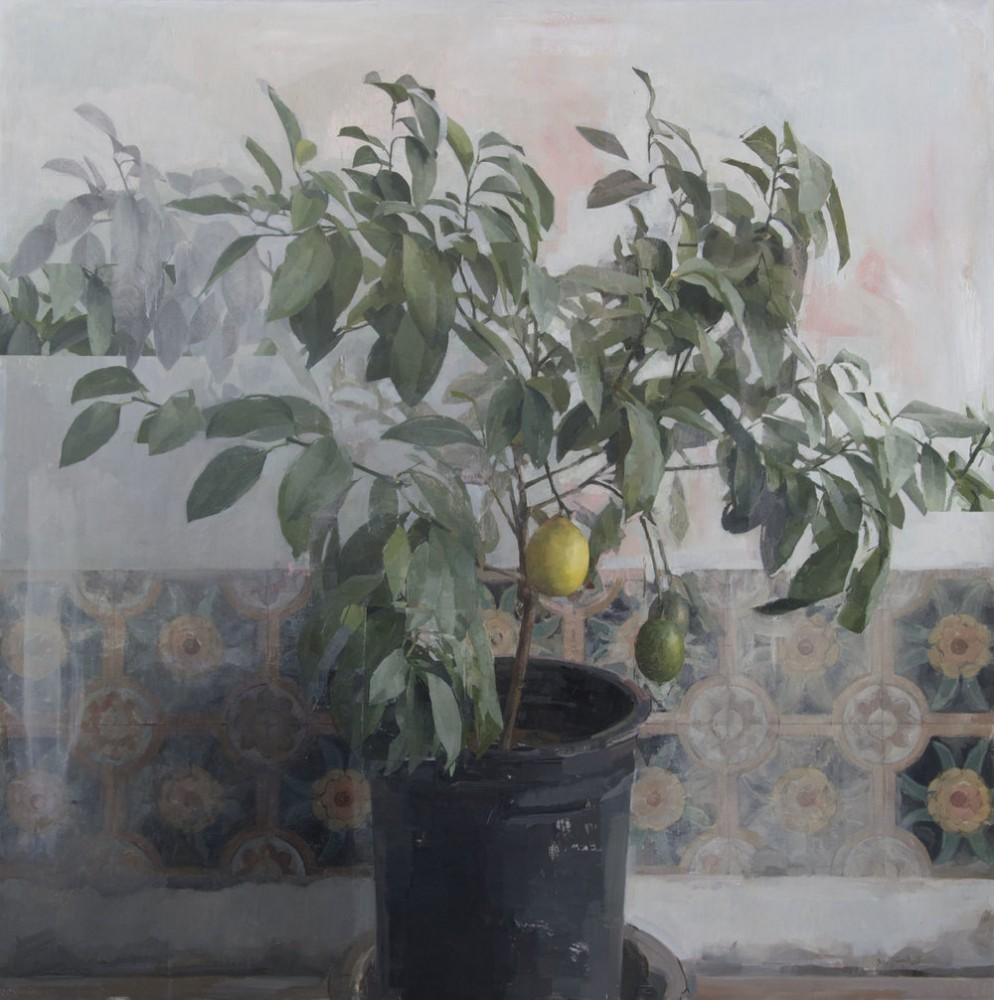 Zoey-Frank-Lemon-Tree.jpg