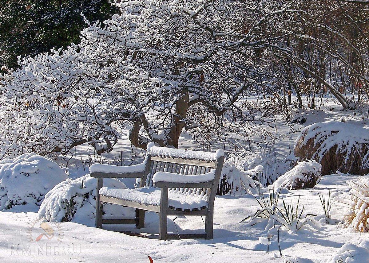 Зимний календарь садовода и огородника