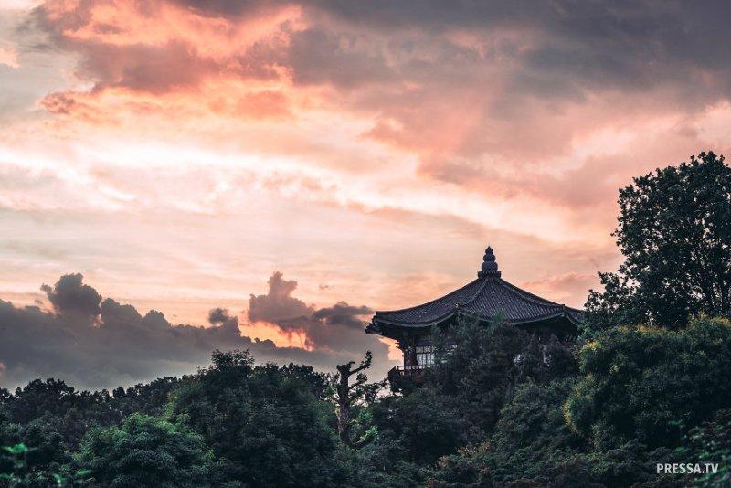 Фото-впечатления о Сеуле