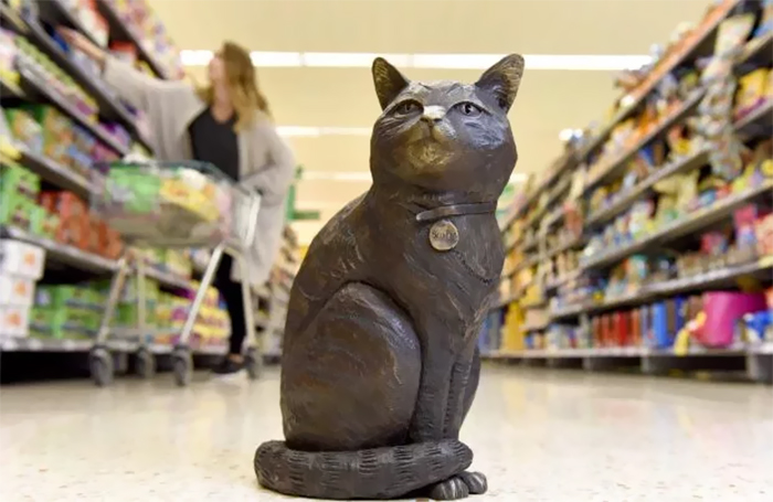Shoppers Raise £4000 For Bronze Statue Of Brutus The Famous Supermarket Cat