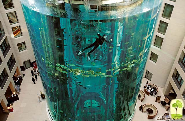 """Самый огромный аквариум в мире - """"Аквадом"""" в Берлине, Германия - 9"""