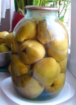 Соленые груши с кизилом и листьями герани — оригинальное консервирование груш на зиму по-болгарскому рецепту.