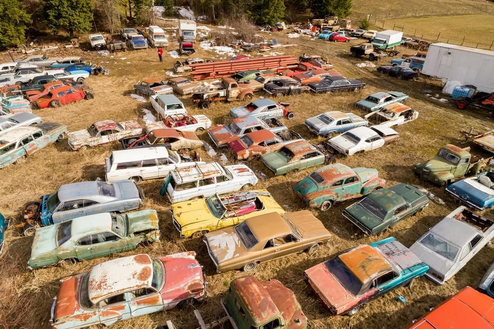 Канадец продает ферму с коллекцией из 340 раритетных автомобилей