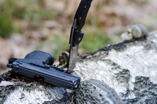ОНФ предложил ужесточить правила получения лицензий на оружие