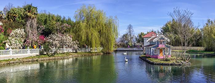 Цветочная красота в весеннем парке «Южные культуры» в Адлере!