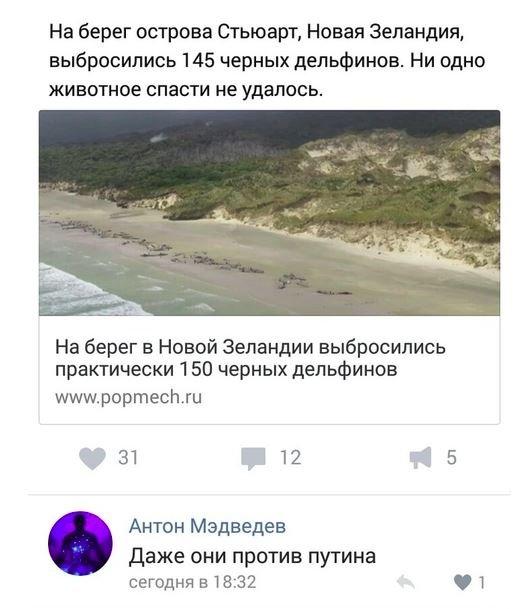 Александр Роджерс: Россия под ударом армии ботов