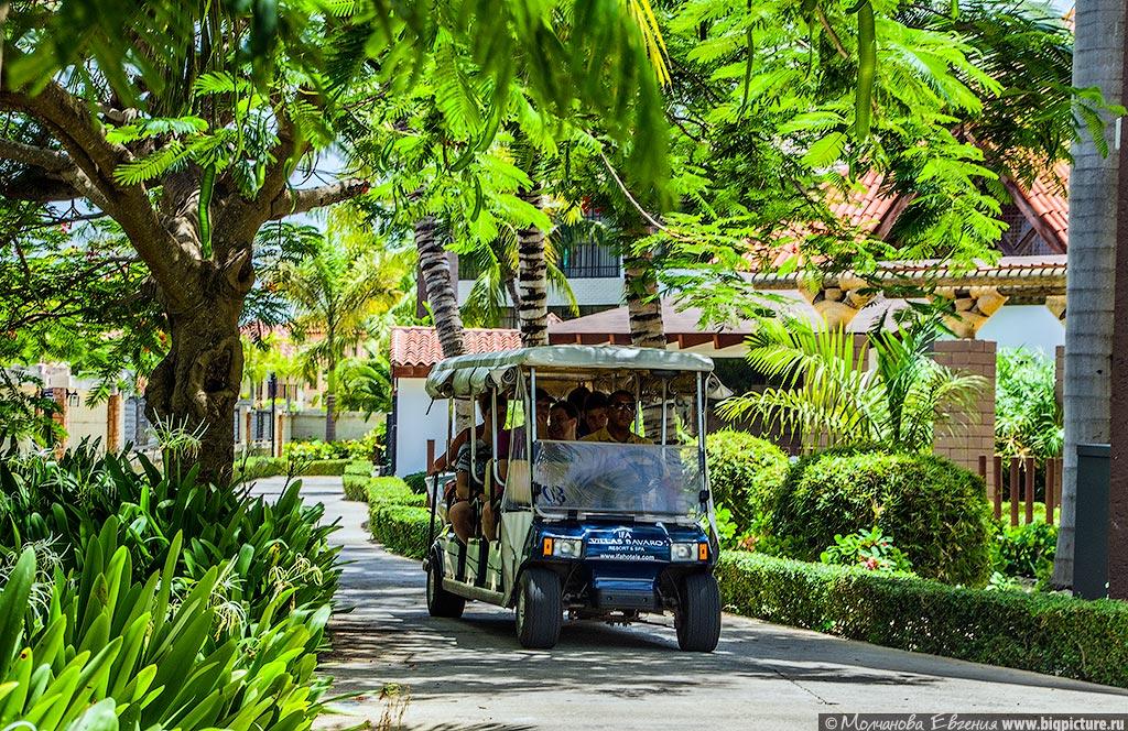 facts 53 75 фактов про Доминиканскую Республику