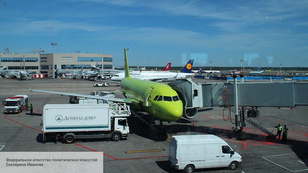 Стало известно, в честь кого назовут  аэропорты Шереметьево и Домодедово