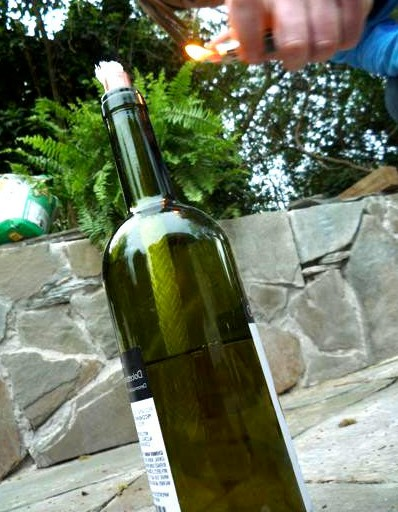 Пустая бутылка для украшения дома
