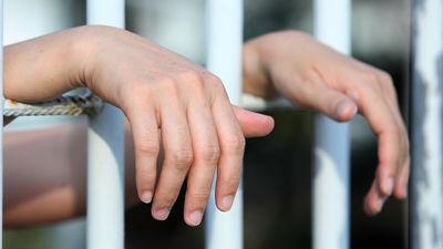Астахов просит изменить меру пресечения обвиняемой в госизмене многодетной матери