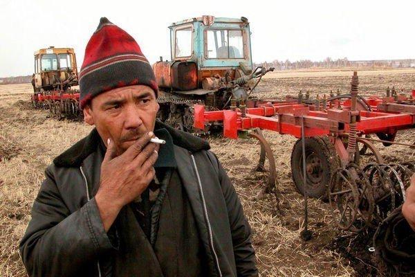 Нищий фермер и сверхприбыль Газпрома