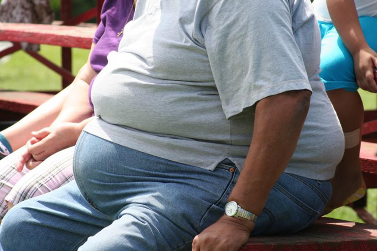 Названы главные причины, приводящие к ожирению