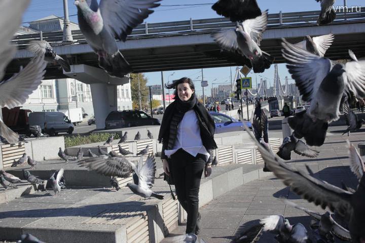 Перелетные птицы не хотят улетать из-за хорошей погоды