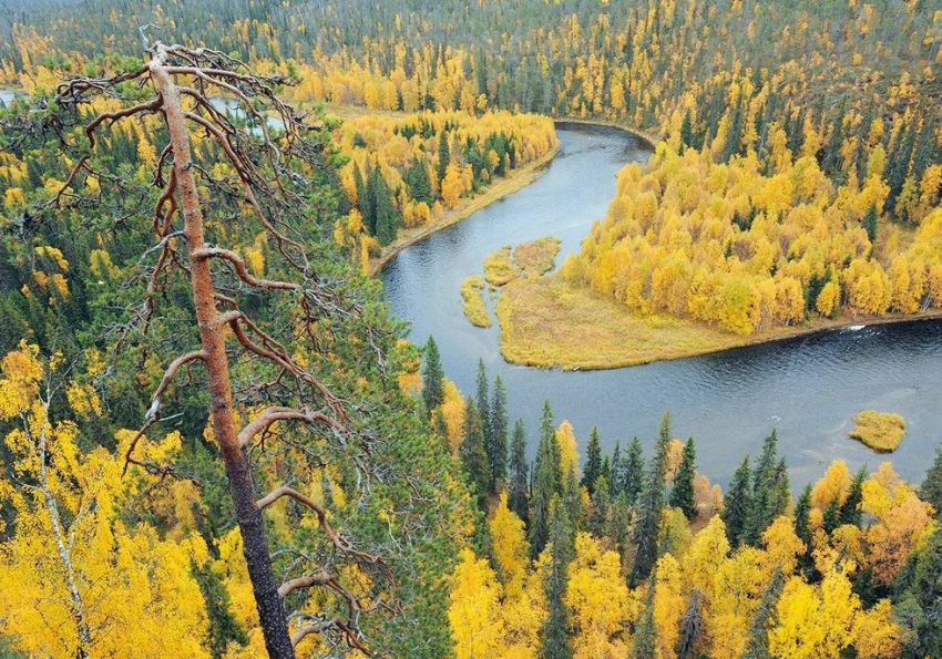 Оуланка: парк, впечатляющий своим разнообразием природа, путешествие, красиво