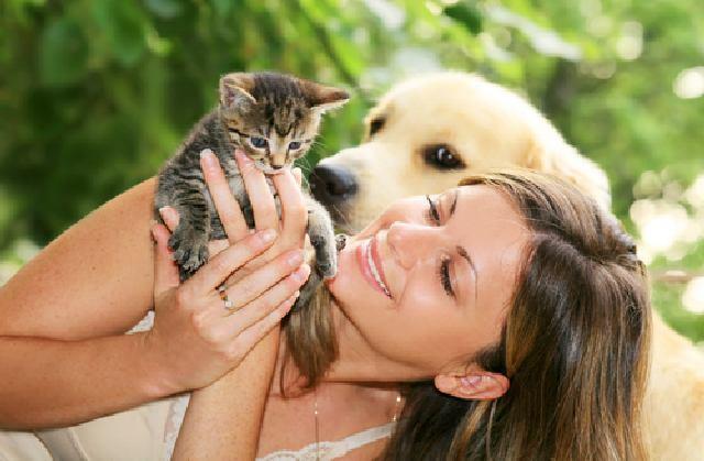 """Ваши животные, или Почему люди делятся на """"кошатников"""" и """"собачников"""""""