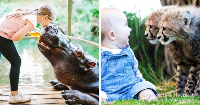 10 реальных историй невероятной дружбы между людьми и дикими животными