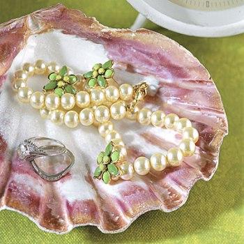 Морские ракушки – идеи декора