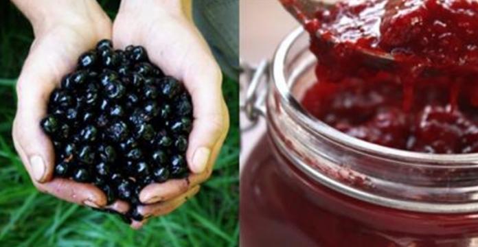 Всегда считала эти ягоды ядовитыми. Как оказалось, ты можешь использовать их в лечении отеков