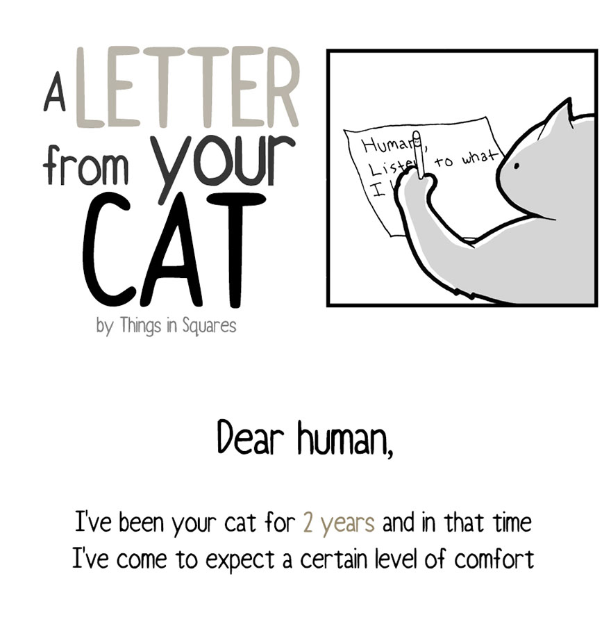 Your Cat Has Written You A Letter, And You Must Read It